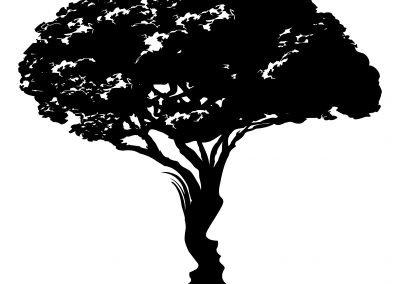 Trappole cognitive. Puntata 0 – Quanto ne sai?